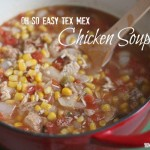 Oh So Easy Tex Mex Chicken Soup